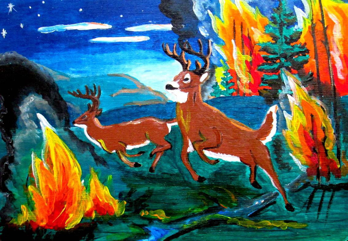 лесной пожар рисунок гуашью заранее белые грибы